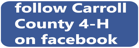 Carroll County 4-H facebook banner