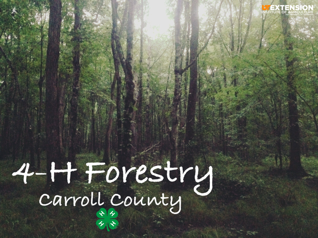 Carroll County - Forestry banner